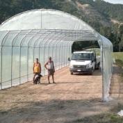 Struttura economica per ricovero piante alto fusto coperta con nylon trasparente