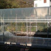 Serra su misura per copertura semenzaio in cemento con porta laterale e alzata avvolgibile montata in alta montagna
