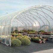 Serra larga mt. 10 per esposizione fiori tipo garden